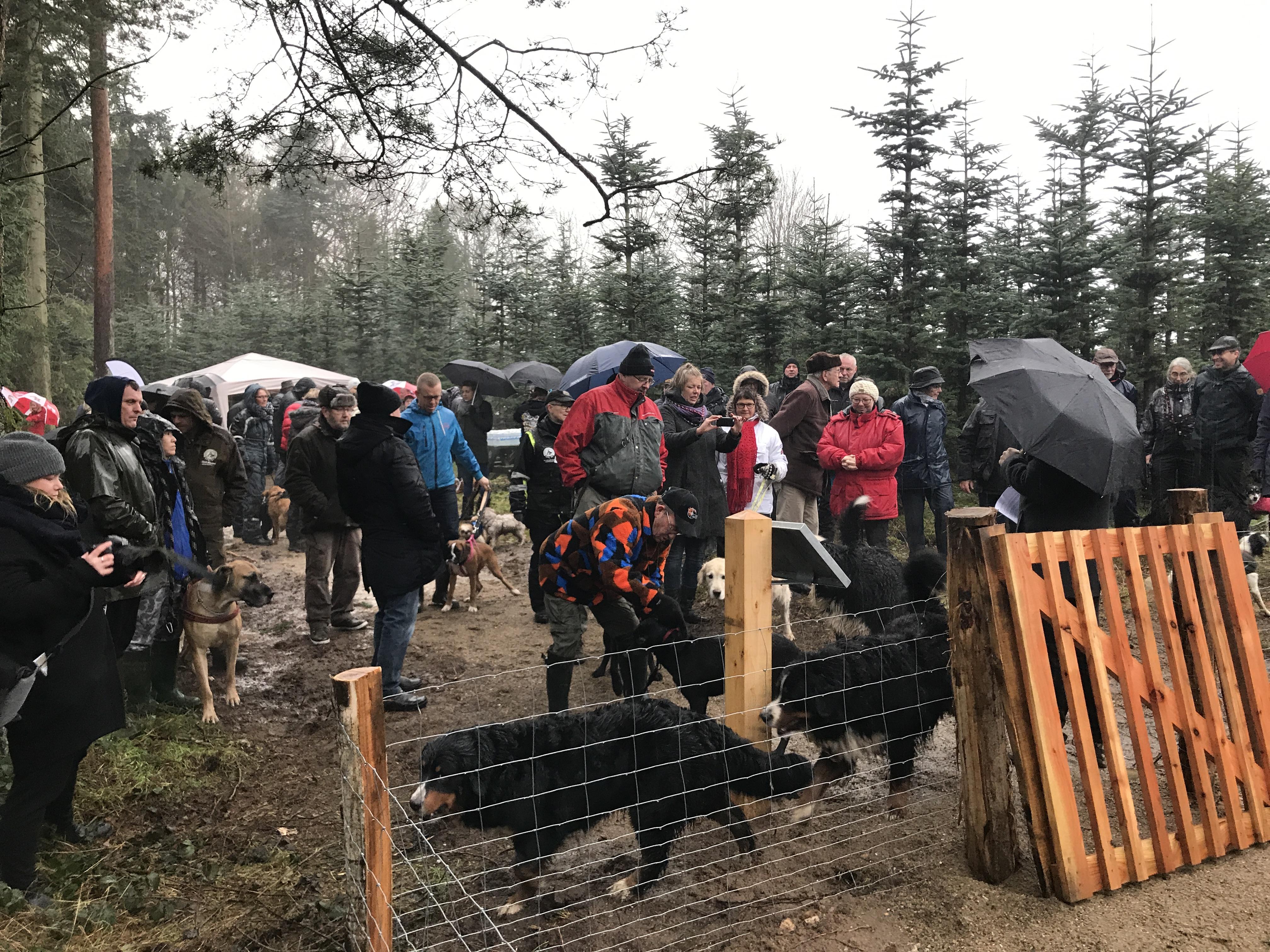 Staurby Skov Åbning af Hundeskoven 2