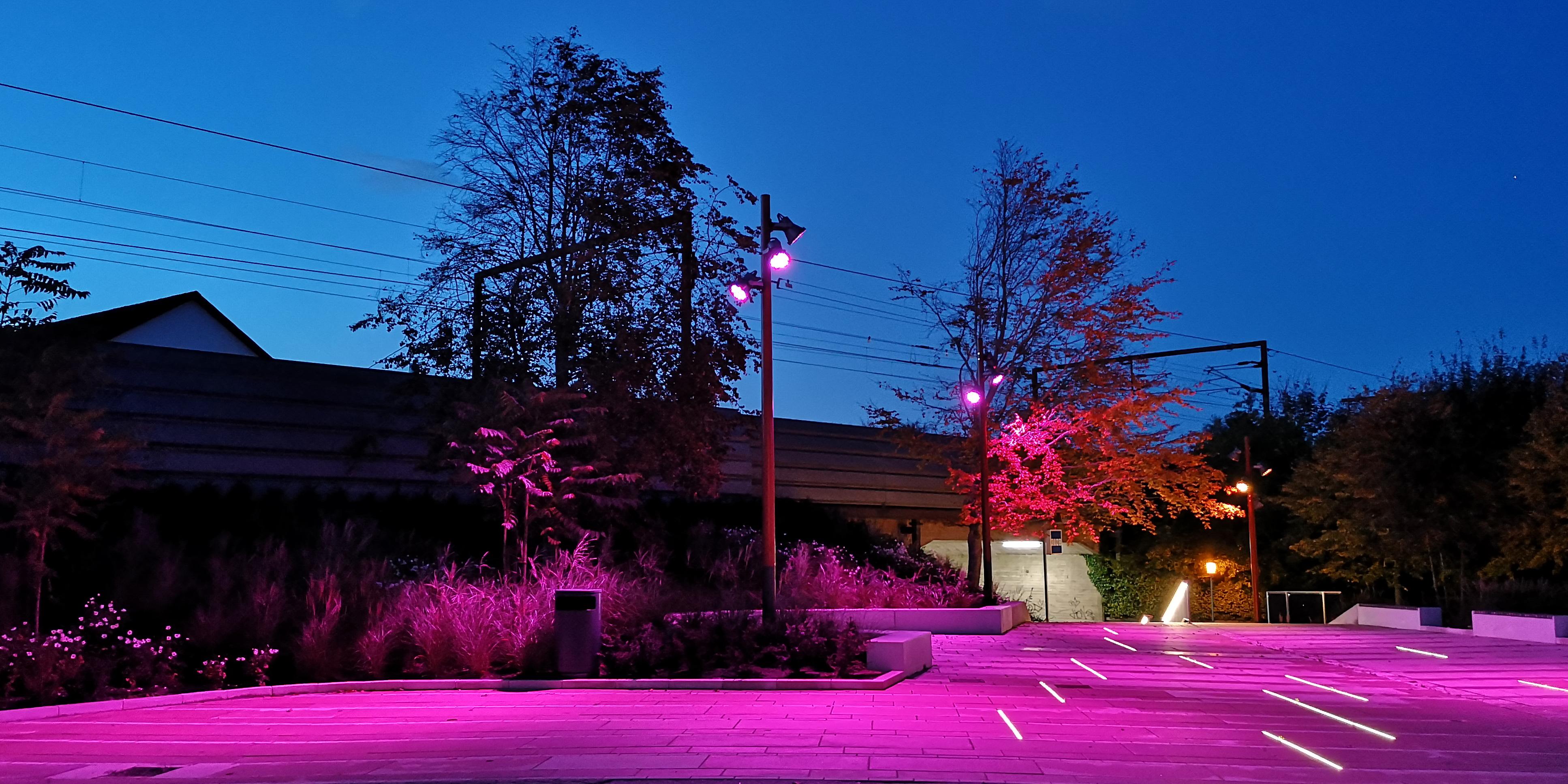 Kinotorv pink lys aften MOOS LANDSKABER
