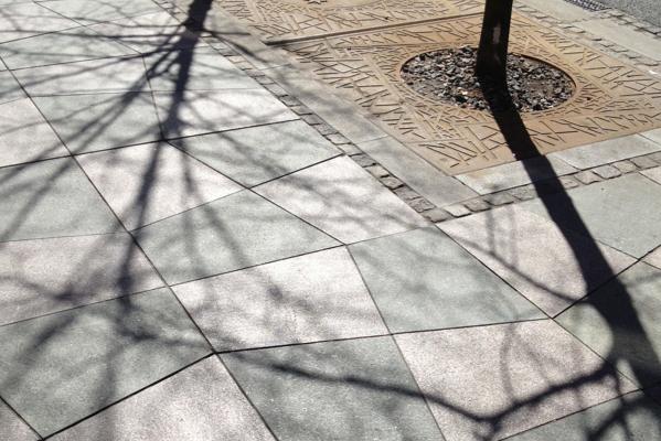 træ_skygger_belægning beskåret