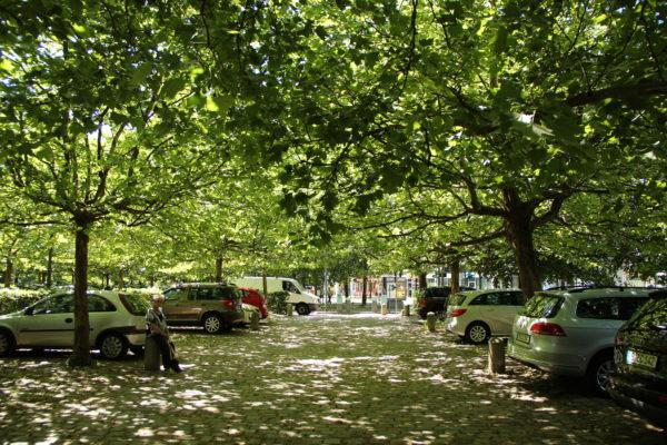 Berlin P plads MOOS LANDSKABER