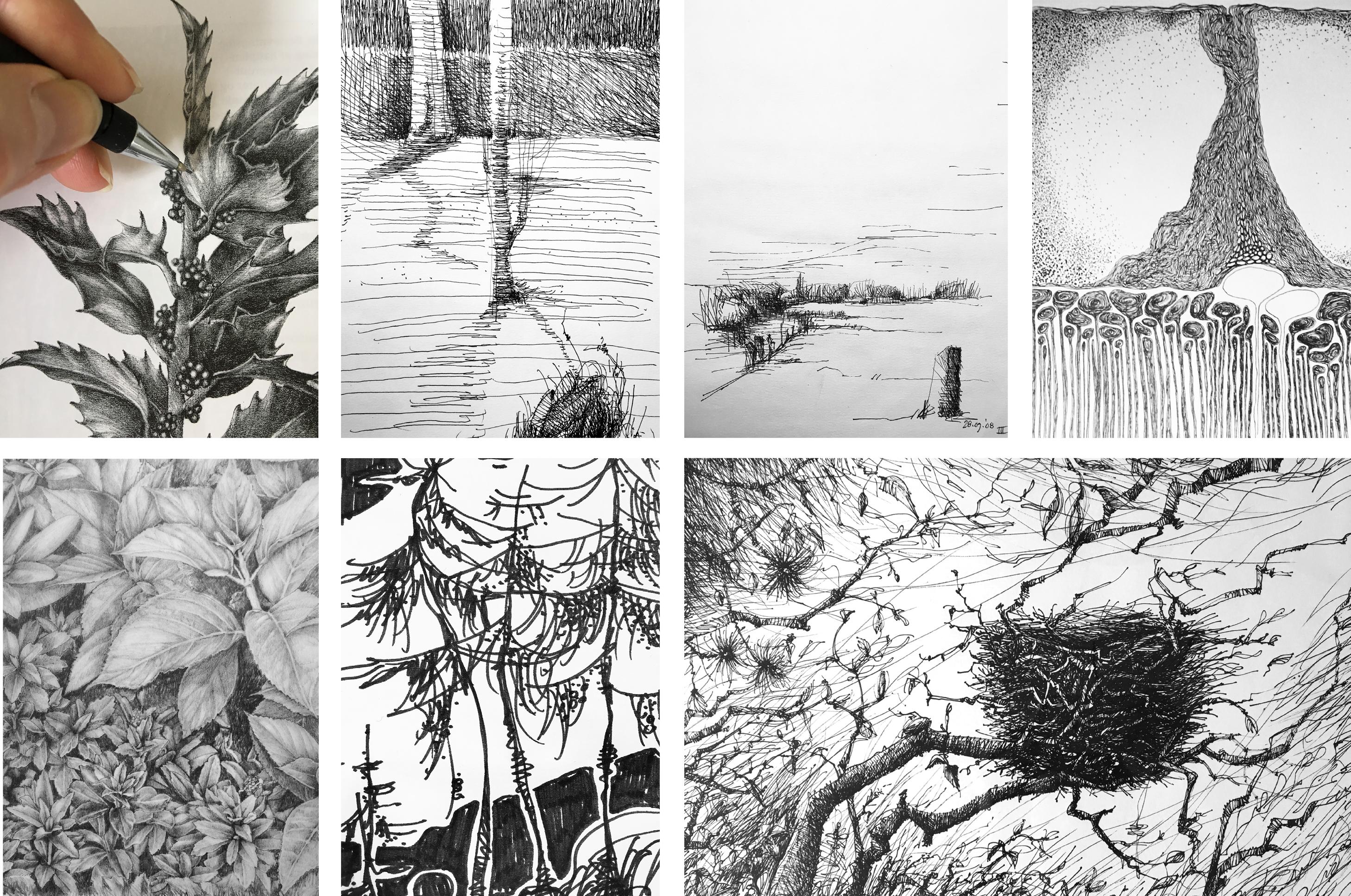 collage tegninger aug 2019 Signe Moos MOOS LANDSKABER