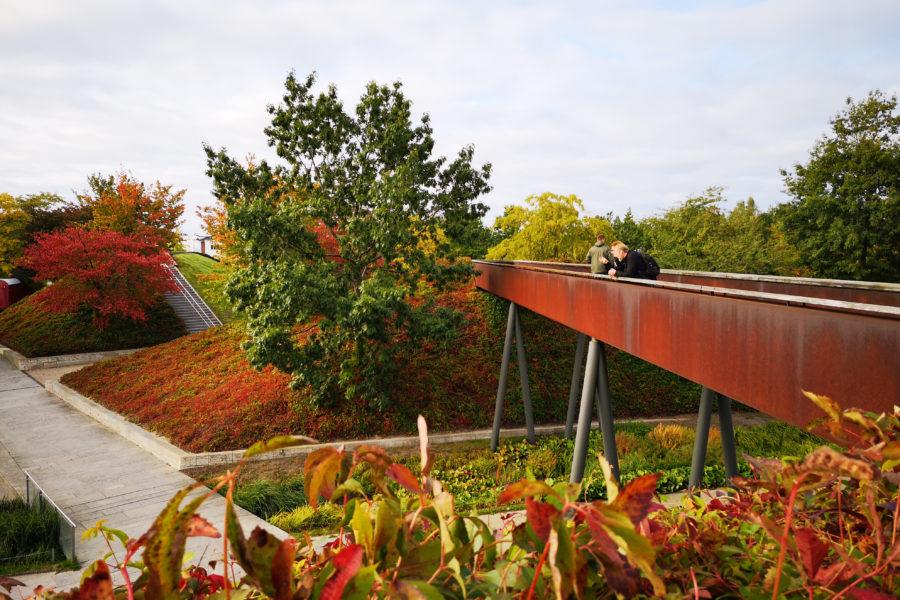 Berlin Volkspark jern rådhusvin MOOS LANDSKABER